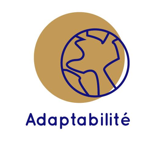 Adaptabilité